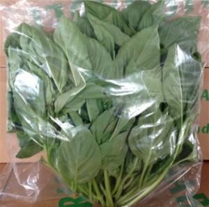 packaging5